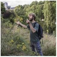 Illustration sortie plantes sauvages.jpg