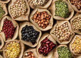 Image Legumes Secs.png
