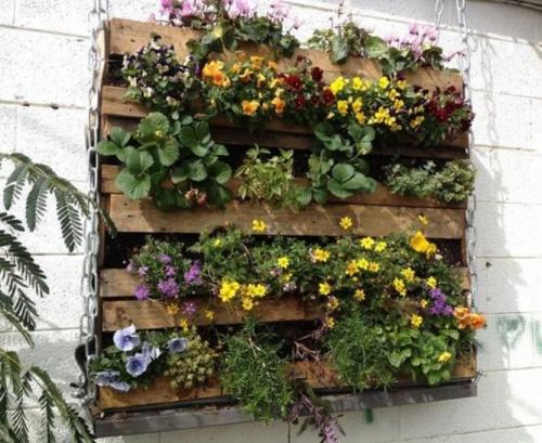 Photo mur vegetal palettes.jpg